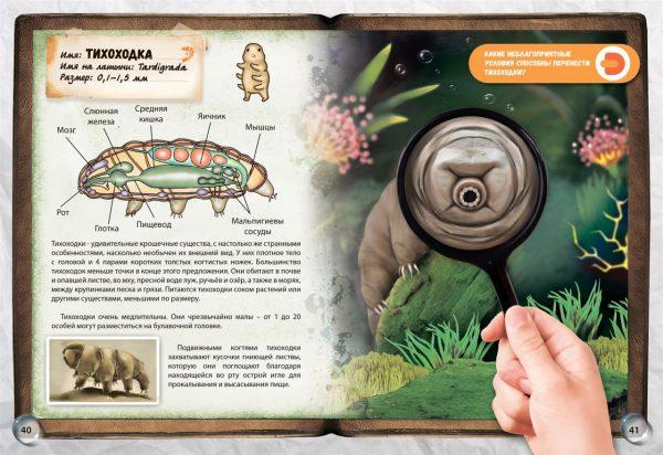 Энциклопедия в дополненной реальности «Микромир»
