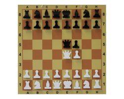 Доска шахматная демонстрационная ламинированная 62х62 см