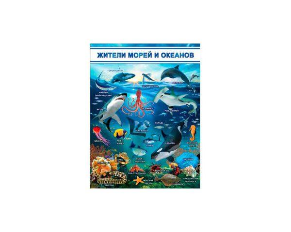 Плакат «Жители морей и океанов»