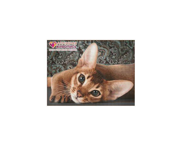 Алмазная мозаика «Абиссинская кошка» Уценка (помятая упаковка)