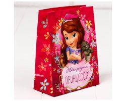 Пакет подарочный «С днём рождения принцесса!» Принцесса София