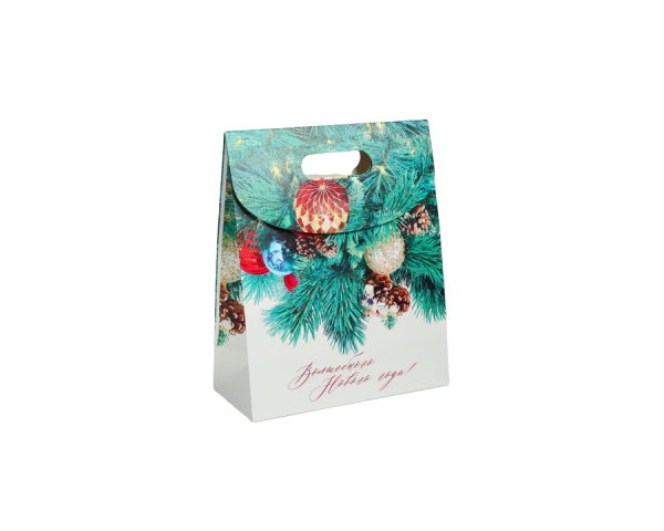 Пакет с клапаном «Волшебного Нового года!»