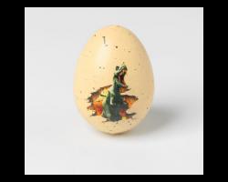 Растущие игрушки «Яйцо с картинкой, Динозавры» 3*4, МИКС